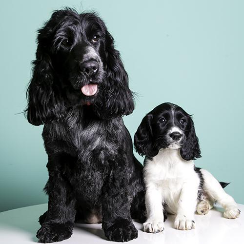 Doris and Wilf